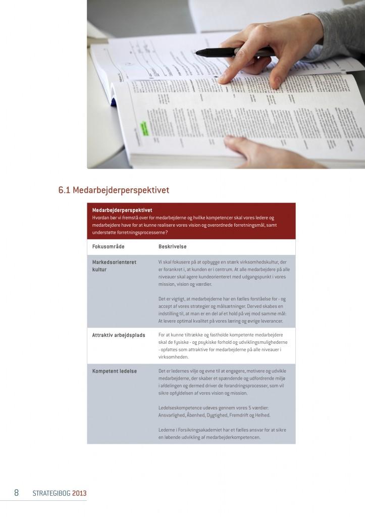 Strategibog.2013.FOAK.tryk3