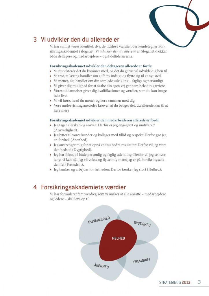 Strategibog.2013.FOAK.tryk